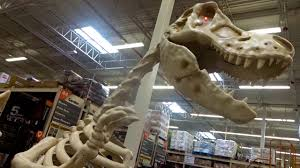 horse skeleton halloween giant dinosaur skeleton at home depot halloween 2017 youtube