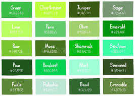 forest green color code shades of green color codes forest green color chic ideas ideas