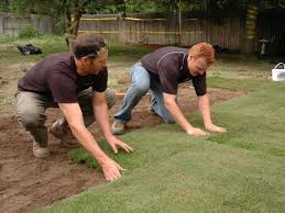 how to remove old sod and lay new sod how tos diy