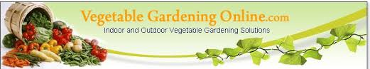 les 25 meilleures idées de la catégorie vegetable garden layout
