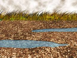 how to reduce stormwater runoff at your home 11 steps