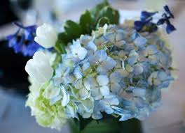 light blue flowers blue wedding flower guide