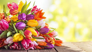 mothers day flowers your one stop guide to buying s day flowers