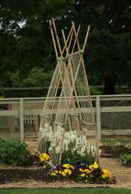 a bamboo arch trellis there u0027re more ideas in the link garden