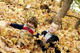 a crafty autumn leaf project for kids and adults tlcme tlc