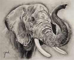 elephant sketch by eriatarka24 on deviantart
