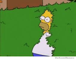 Homer Simpson Meme - homer simpson bush gif weknowmemes