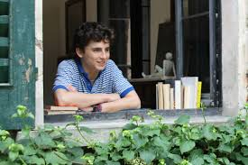 by by andré aciman on cmbyn sequels