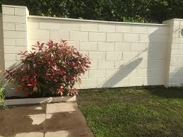 planting climbers ivy against garden walls gardening forum