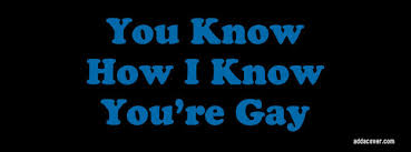 You Know How I Know You Re Gay Meme - you know how i know you re gay facebook covers you know how i