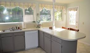 cabinet startling best kitchen paint colors with light cabinets