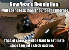 New Cat Meme - new year s resolution lolcats lol cat memes funny cats
