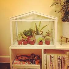 socker greenhouse my new mini greenhouse from ikea garden pinterest mini