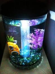 How To Make Fish Tank Decorations At Home Hawkeye 3 Gallon 360 View Aquarium Kit With Led Lighting And