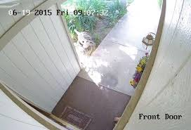front door video camera a view from the camera above the front door yelp