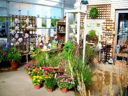 Flower Shop Interior Pictures Flower Shop Interior Shelves And Lattice As Wall Decoration For