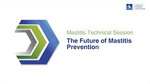 mastitis technical session the future of mastitis prevention
