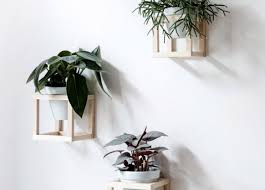 window planters indoor plant beautiful wall planters indoor succulent living wall