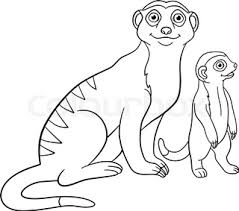 coloring pages little cute meerkat stands and smiles stock