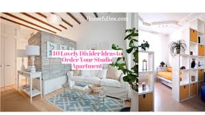 40 Lovely Divider Ideas to Order Your Studio Apartment  HOMEFULIES