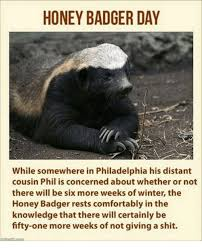 Meme Honey Badger - honey badger day while somewhere in philadelphia his distant cousin