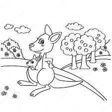kangaroo coloring pages vector u2014 stock vector attaphongw 82116672