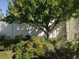 Creative Backyard Creative Backyard Solutions In Orange Ca Orange Ca