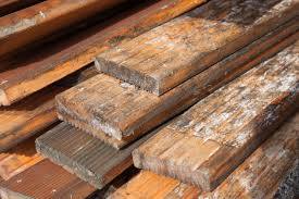 Hardwood Floor Planks Mold On Hardwood Floors Safety And Preparing The Removal