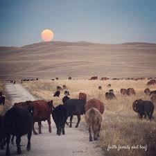 Nebraska can sound travel through space images 70 best nebraska sandhills images nebraska scenery jpg