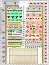 small vegetable garden layout home design ideas and pictures