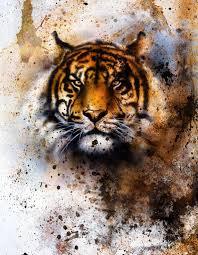 imagenes abstractas hd de animales collage de tigre sobre fondo abstracto de color estructura