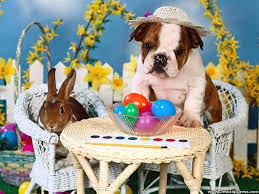 easter tea party desktop wallpapers animals backgrounds easter tea party www
