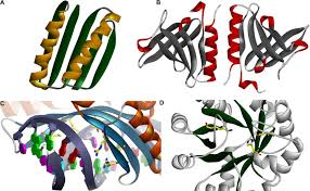 Parham   Academy  the Cheminformatic Central  Comments The impact of molecular dynamics on drug design  applications for the characterization of ligand    macromolecule complexes