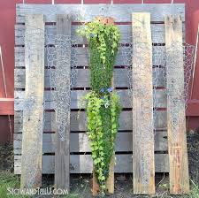 Vertical Garden Pot - how to make a vertical chicken wire planter on pallet wood