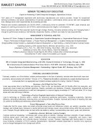 It Risk Management Resume Guide To A Good Resume Essays On Educational Goals And Career