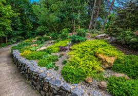 Alpine Rock Garden by From Our Gardens This Tanger Garden Rocks Life Greensboro Com