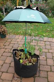 Osu Umbrellas by Test Time In The Garden A Sprayer A Compost Grinder And A Plant