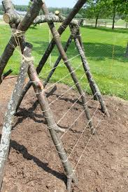 How To Build A Trellis A Pea Trellis Fort How Wee Learn