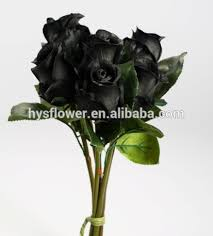 real black roses china real black roses china real black roses manufacturers and