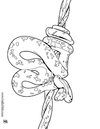 snake coloring pages hellokids com