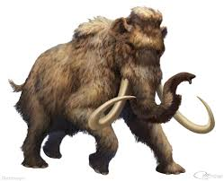 woolly mammoth dinopedia fandom powered wikia