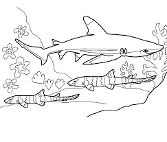 Shark Coloring Pages Free Printable Coloring Pages Angel Shark Coloring Pages Sharks Printable