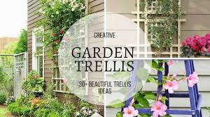 30 awesome garden trellis ideas youtube