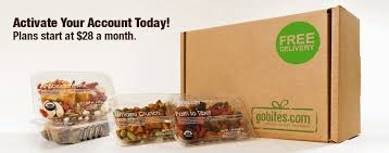 snack delivery service gobites is a portion controlled all snack delivery