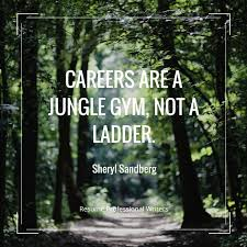 Donald Burns Resume Writer 159 Best Career Quotes Images On Pinterest Career Quotes