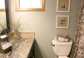 bathroom homey idea guest bathroom design ideas 16 amazing small