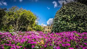 Botanical Garden Sydney discover royal botanic gardens sydney in australia world love