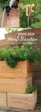 make a wine box herb garden fit for a connoisseur garden therapy