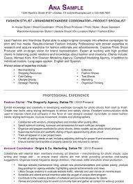 Photographers Resume Sample by Resume Samples Chicago Resume Expert