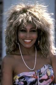 Ike Tina Turner Halloween Costumes Posh Beauty Halloween Costume Ideas Lesson